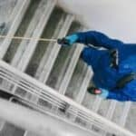 Steps to Finding the Right Commercial Pest Control Company