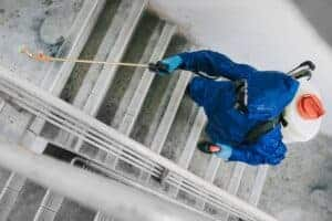 Read more about the article Steps to Finding the Right Commercial Pest Control Company