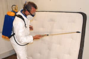 Bed bug control by our pest control technician in Middleton