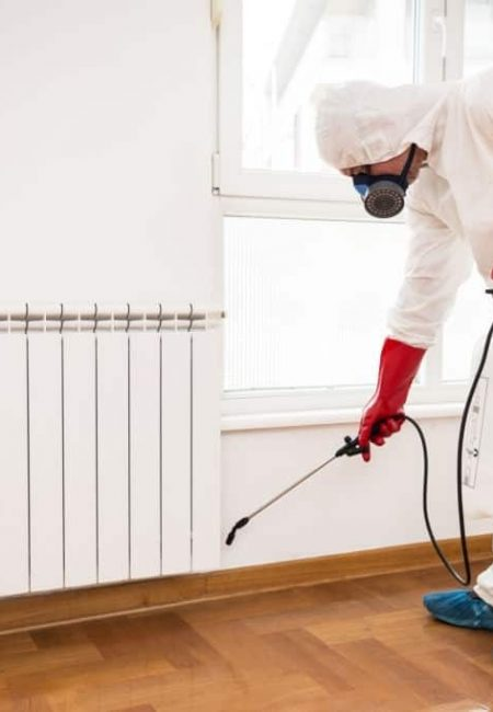 Exterminator in work spraying pesticide or insecticide with sprayer