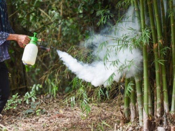 man-holding-fogging-eliminate-mosquito-preventing-spread-dengue-fever-zika-virus-bamboo_73523-2048.jpg